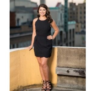 🆕  Lauren James Landry Dress Black